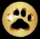 zlata packa