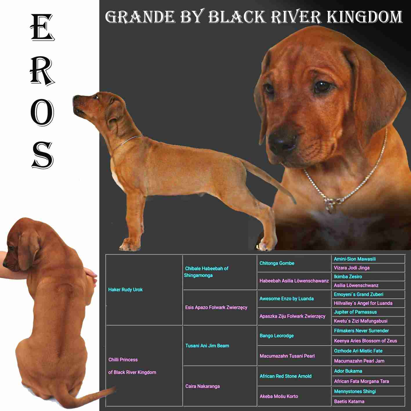 EROS GRANDE by Black River Kingdom